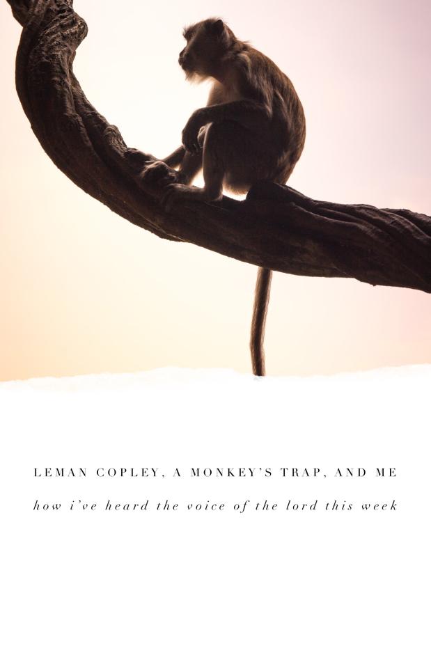 Leman Copely, a Monkey's Trap, andMe